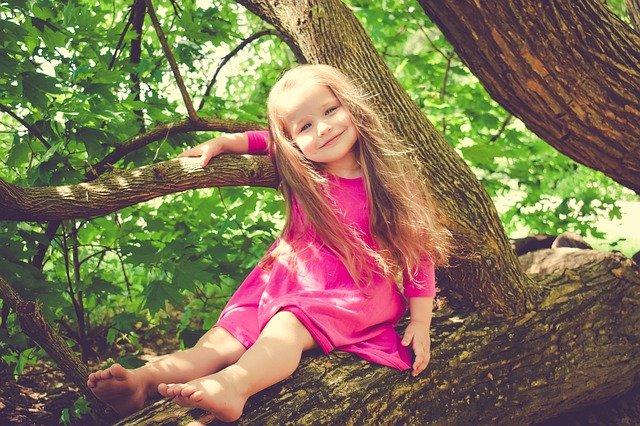幼い頃からある木に寄り添って読みたい絵本