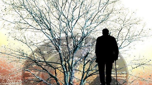 『おおきな木』幼い頃からある木に寄り添って読みたい絵本