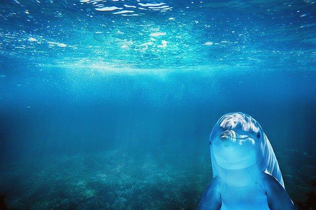 『海のトリトン』登場人物